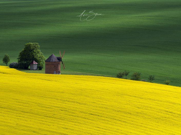 Moravia, Cehia